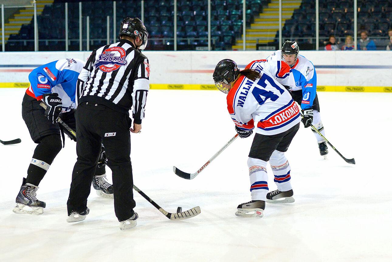 liga eishockey